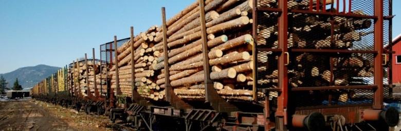wood tip